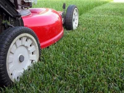 Lawn mower on partly-cut lawn.